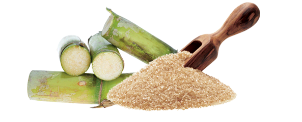 Sugar and sugar cane